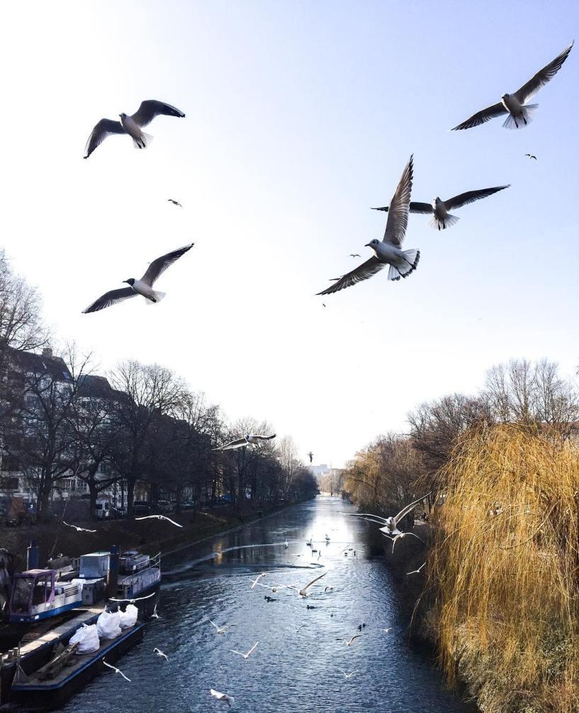 Landwehrkanal w Berlinie